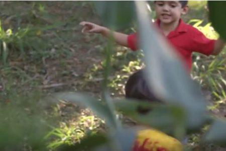 """Cena do filme """"Criança e Natureza"""""""