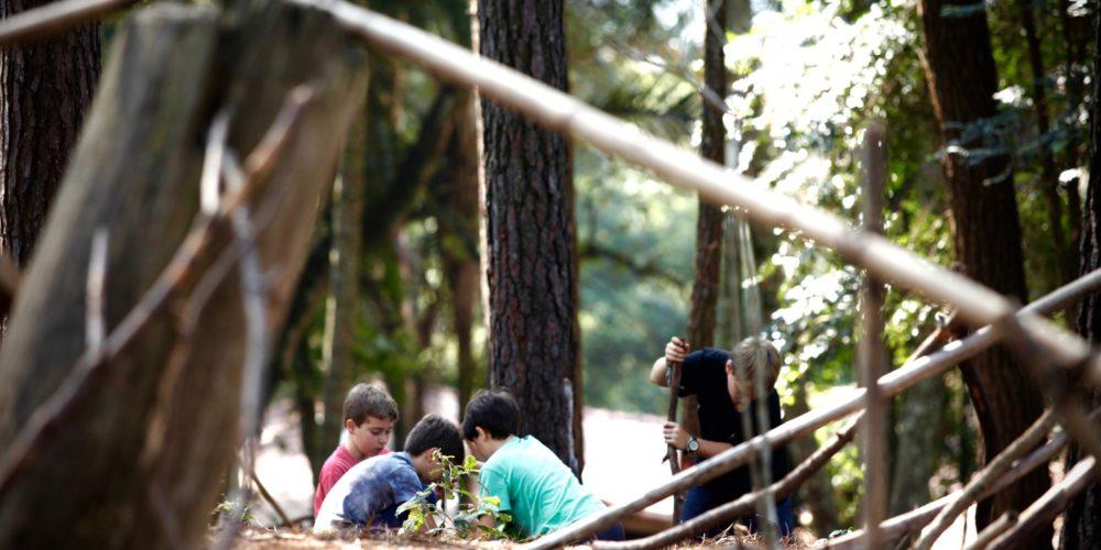 """""""Ter acesso à natureza é um direito das crianças"""", por Pedro Hartung"""