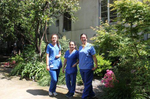 médicos no jardim