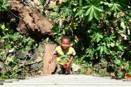 Foto tirada de cima. Um menino olha para o alto com uma lata de tinta vermelha na mão. Ao redor dele muitas plantas.