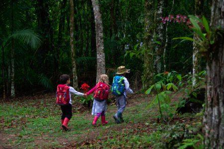 Crianças na floresta