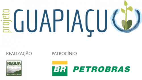 projeto-guapiacu-regua-768x435