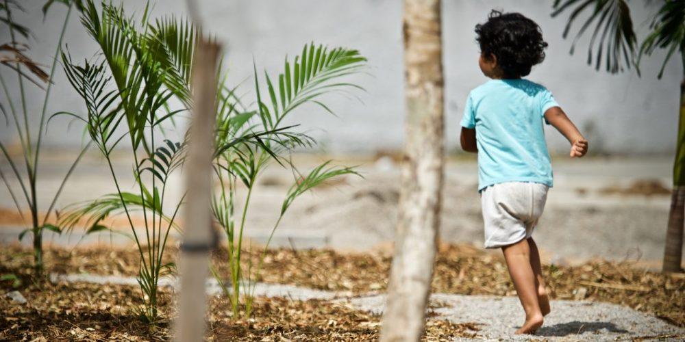 Criança corre, de costas para a câmera, por um caminho cercado por mudas plantadas recentemente, em um espaço ao ar livre.
