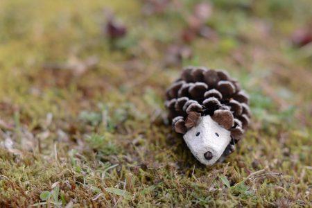 """Sobre a grama, há um pequeno """"tatu"""" construído com uma pinha e um pedaço de caixa de ovos."""