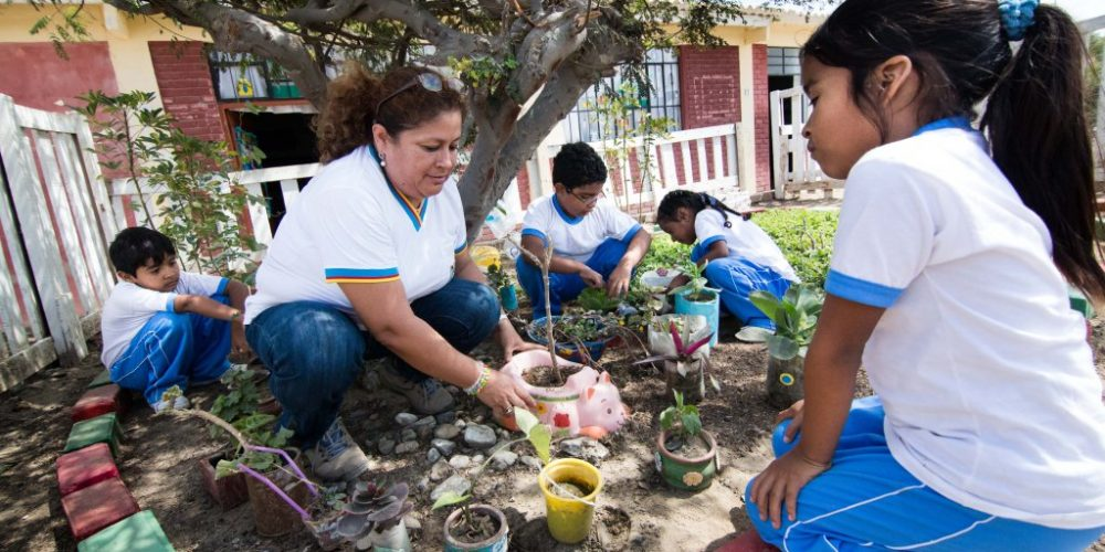 Crianças acompanhadas de um adulto, plantando em uma TiNis, no Peru.