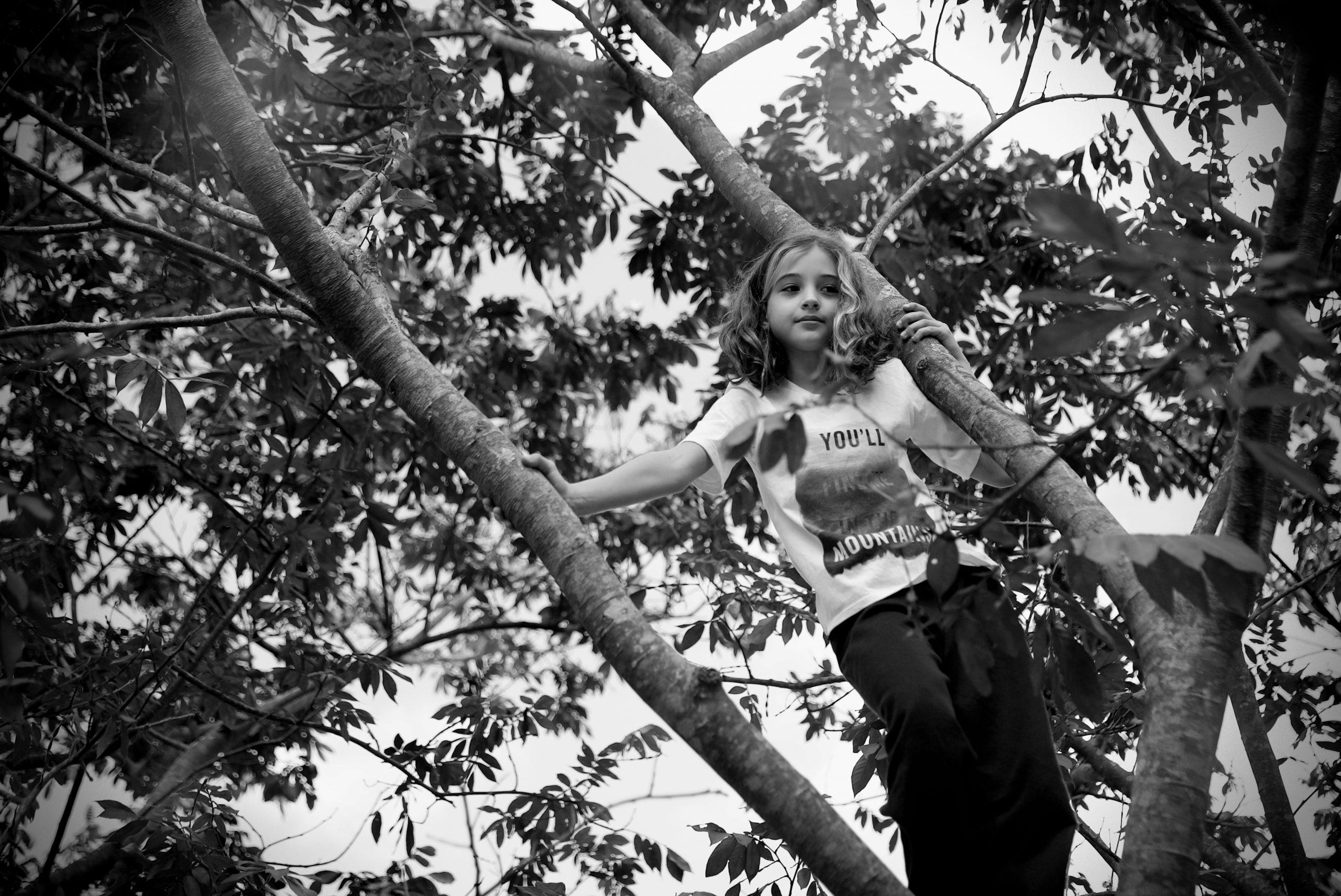 Foto em preto e branco. Criança em cima de uma árvore. Ela está em pé, segurando com as duas mãos em galhos.
