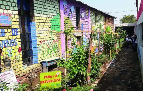 Canteiro de plantas, em um corredor ao lado de paredes de blocos coloridos. No final do corredor crianças cuidam da TiNi.