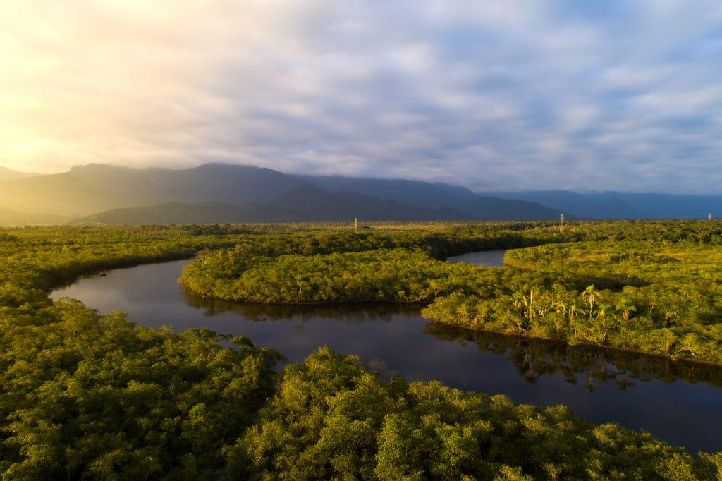 braço de rio corta a floresta Amazônica.